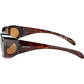 Alpina Sunglasses Overview, havana/brown mirror